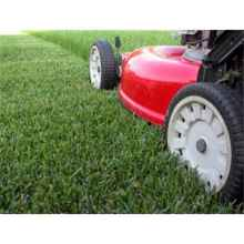 LAWN MOWERS & GARDEN MACHINERY