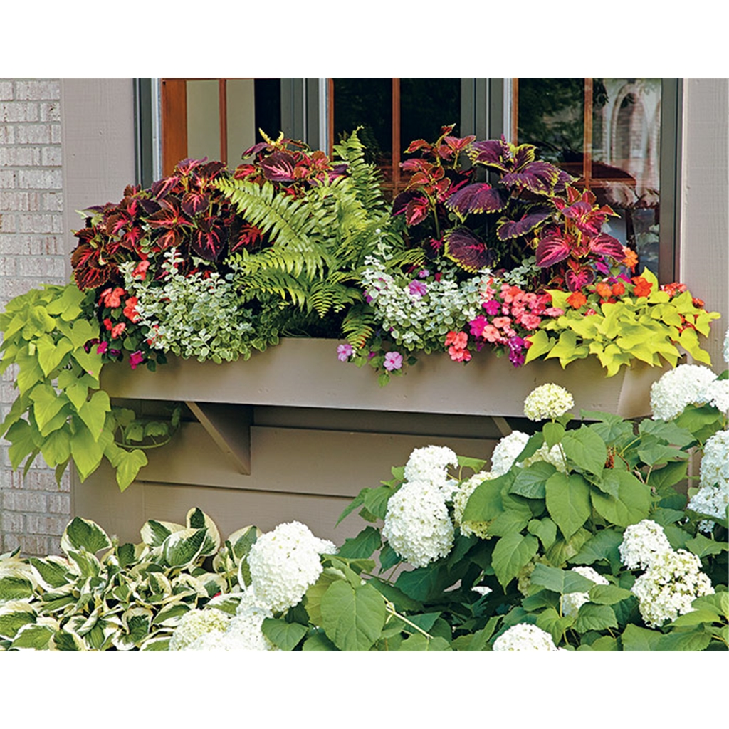 Spice Up Your Garden With Windowboxes and Pots